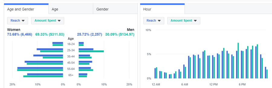 Facebook Ads for Doctors - Dashboard Example 37